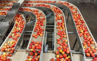 Most Common Conveyor Belt Problems To Avoid