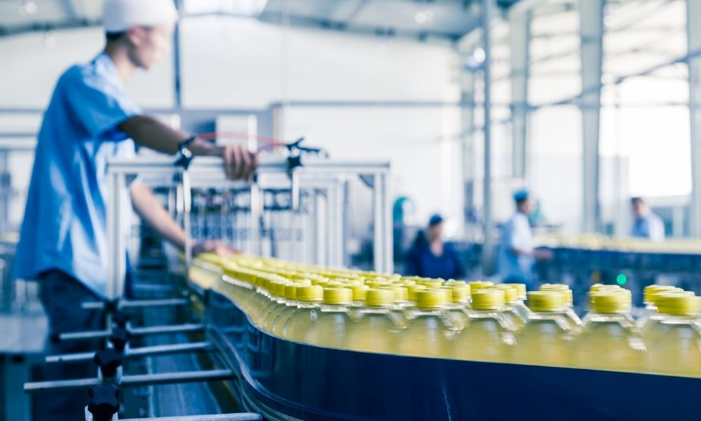 The Advantages of Conveyors in the Food Processing Industry